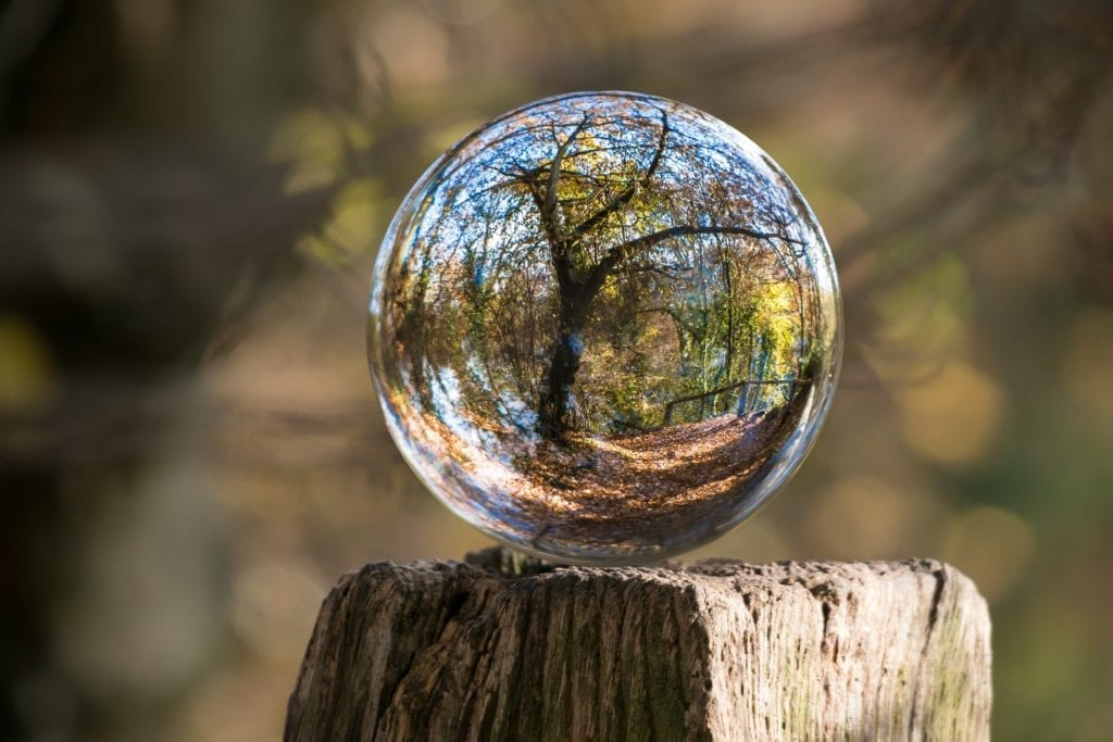 glass ball in nature for invisalign safety blog