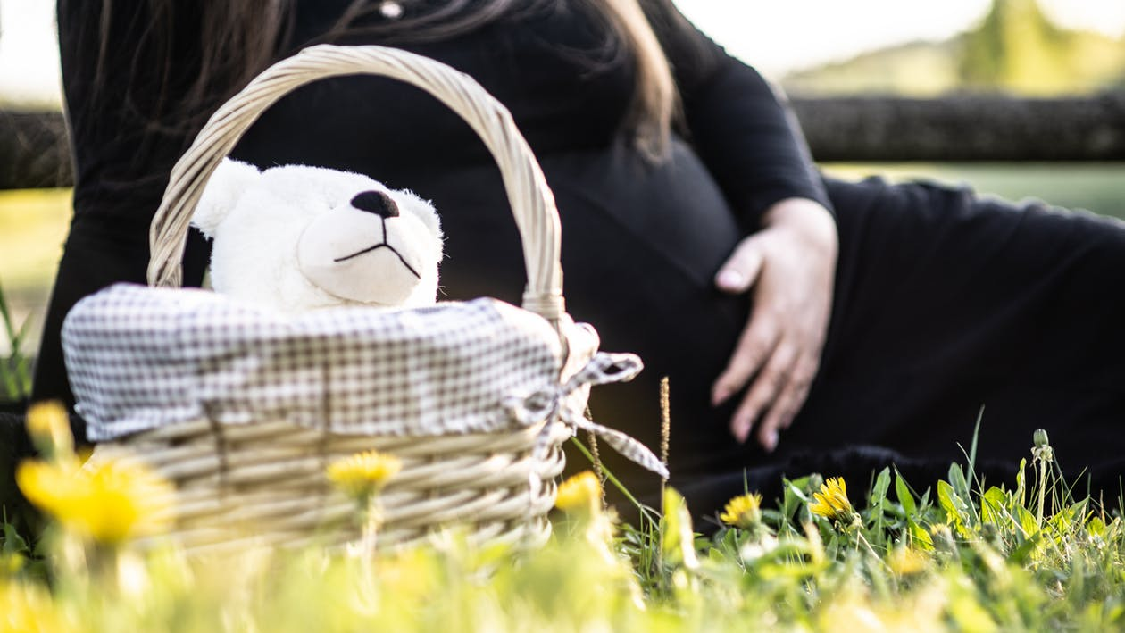 pregnant woman teddy bear for dental implant blog